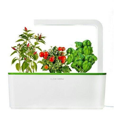 Click & Grow Smart Herb Garden Томаты, перец, базилик нд