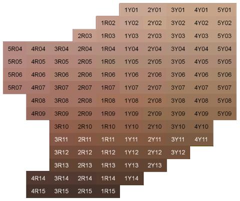 Pantone Skintone Guide (STG-201) - цветовой cправочник