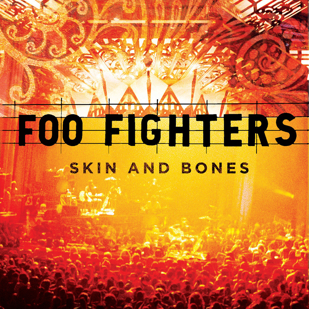 Foo FightersВиниловые пластинки<br>Виниловая пластинка<br>