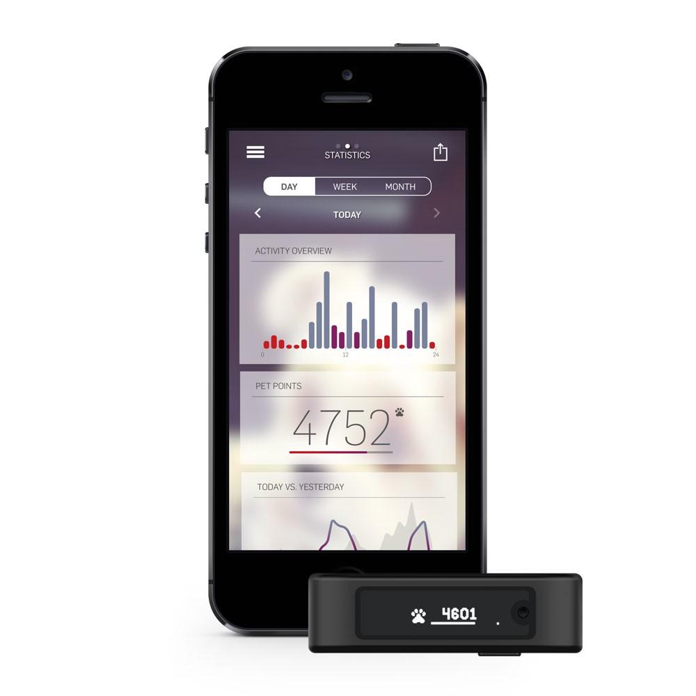 Motion Petbit Activity Tracker