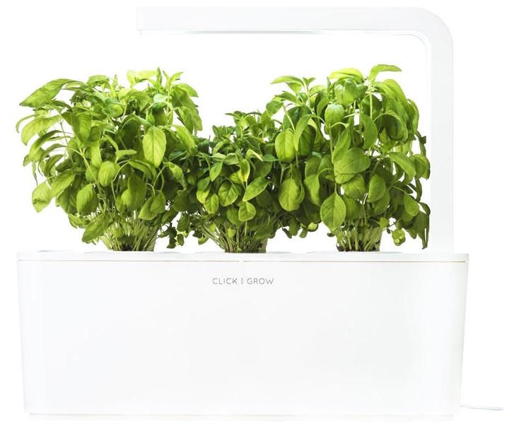 Click & Grow Smart Herb Garden Базилик