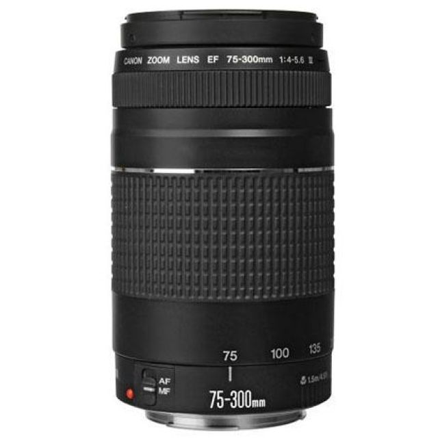 Canon EF 70-300mm 6473A015