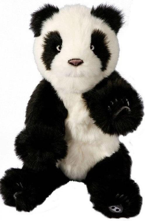 Alive Mini Panda Cub